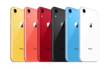 iPhone XR Bagside inkl Ramme og Glas Udskiftning