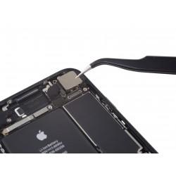 Apple iPhone 7  Bag Kamera Udskiftning