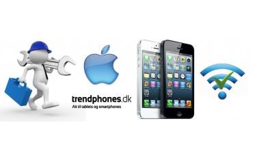 iPhone 5 Reparation